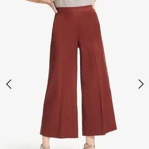 Ann Taylor Burnt Orange Wide Leg Crop Trouser Pant